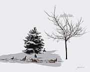 Winter Trees Mixed Media Posters - Pheasants in the Snow Poster by Gary Gunderson