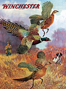 Winchester Posters - Pheasants On The Rise Poster by Lynn Bogue Hunt
