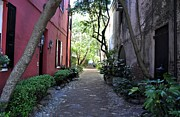 South Philadelphia Prints - Philadelphia Alley Charleston South Carolina Print by John Black