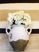 Poster Prints Framed Prints - Philippian Pottery with Hydrangea Framed Print by Marsha Heiken