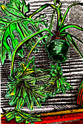 Lively Drawings - Philodendron In front Of A Bamboo Blind by Al Goldfarb