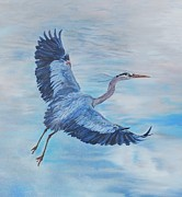 Great Painting Originals - Phyllis Barrett  by Great Blue Heron