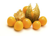 333 Prints - Physalis  Print by Fabrizio Troiani
