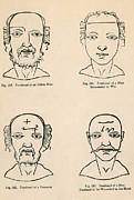 Long-lived Photos - Physiognomy by Science Source