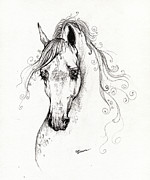Horse Drawing Posters - Piaff polish arabian horse drawing Poster by Angel  Tarantella