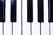 Orchestra Digital Art Metal Prints - Piano Keys Metal Print by Wingsdomain Art and Photography