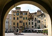 Lucca Photos - Piazza Antifeatro Lucca by Mathew Lodge