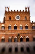 Gathering Photos - Piazza del Campo Tuscany Italy by Marilyn Hunt