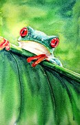 Tiny Tree Frog Prints - Picaboo Print by Candy Yu