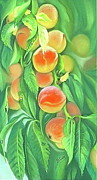 Peaches Pastels - Pick Me by Betty Ann Coy