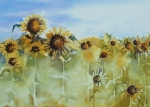 Field Of Sunflowers Paintings - Pick Me by Gretchen Bjornson