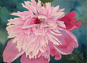 Peonies Paintings - Pick Me by Mohamed Hirji