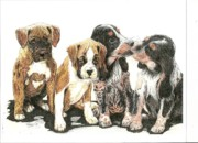 Puppies Drawings Posters - Pick of the Litter Poster by Therese A Kraemer