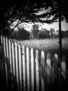 Picket Fence Prints - Picket Fence Landscape Print by Michael L Kimble