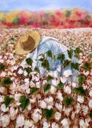 Cotton Field Posters - Picking Cotton Poster by Barbel Amos