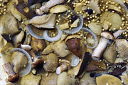 Bottled Metal Prints - Pickled Mushrooms Metal Print by Michal Boubin