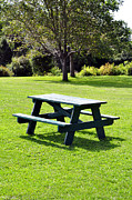 Empty Bench Framed Prints - Picnic table. Framed Print by Fernando Barozza