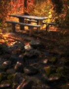 Dappled Light Photo Metal Prints - Picnic Table Metal Print by Utah Images
