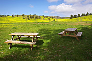 Green Hills Prints - Picnic tables Print by Carlos Caetano