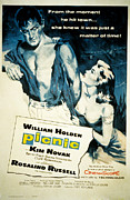 1955 Movies Posters - Picnic, William Holden, Kim Novak Poster by Everett
