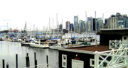 Docks Photo Posters - Picturesque Vancouver Harbor Poster by Will Borden