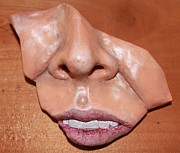 Nose Reliefs - Pieces by Megan Nelson