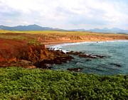 Beach - Piedras Blancas I by Timothy Bulone