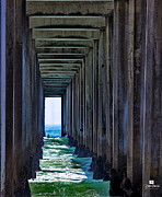 San Diego California Posters - Pier - In The Box Poster by Russ Harris