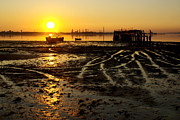 Low Tide Posters - Pier at Sunset Poster by Carlos Caetano
