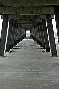 Tybee Island Pier Photos - Pier at Tybee Island by Daryl Hogbin