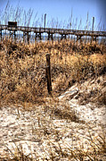 Beach Scenes Photo Metal Prints - Pier Behind the Dune Metal Print by Emily Stauring