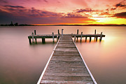 Sunset Sky Framed Prints - Pier In Lake Macquarie At Sunset, Australia Framed Print by Yury Prokopenko