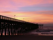 Fishing Pier Posters - Pier Sunrise Poster by Al Powell Photography USA