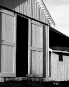 Wings Domain Art - Pierce Point Ranch 16 . bw by Wingsdomain Art and Photography