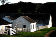Blacksmiths Photos - Pierce Point Ranch 6 by Wingsdomain Art and Photography