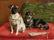 Pug Dogs Prints - Pierette and Mifs Print by Charles van den Eycken
