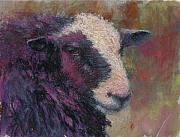 Sheep Pastels Framed Prints - Pierre Framed Print by Susan Williamson