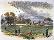 Wildfowl Prints - PIGEON HUNTING, c1875 Print by Granger