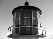 White Lighthouse Prints - Pigeon Point Lighthouse Beacon - Black and White Print by Carol Groenen