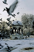 Flock Of Bird Art - Pigeons flying near a fountain under the snow by Sami Sarkis