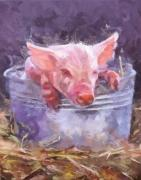 Peter Kupcik - Piglet in a Bucket