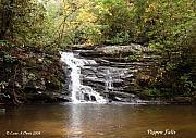 Pigpen Falls Oconee County Sc Print by Lane Owen