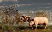Pig Art Posters - Pigs After A Storm Poster by Daniel Eskridge
