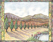 Border Drawings - Pigs and Cypress with border by Carolyn McNabb
