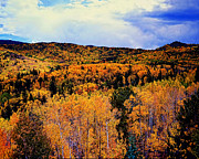 Colorado Greeting Cards Posters - Pikes Peak Autumn NW Poster by Jon Burch Photography