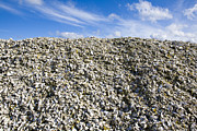 Oyster Art - Pile of Oyster Shells, Long Beach Peninsula, Washington by Paul Edmondson