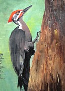 Woodpecker Paintings - Pileated Woodpecker by Barbara Haviland