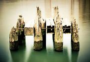 Pilings Prints - Pilings on the Columbia Print by Marius Sipa
