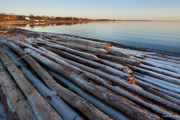 Pilings Photos - Pilings by Robert Lacy