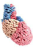 Digitally Generated Image Digital Art - Pills Heart by MedicalRF.com